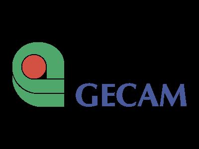 GECAM